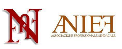 Concorso a dirigente: Anief organizza il corso di formazione on-line